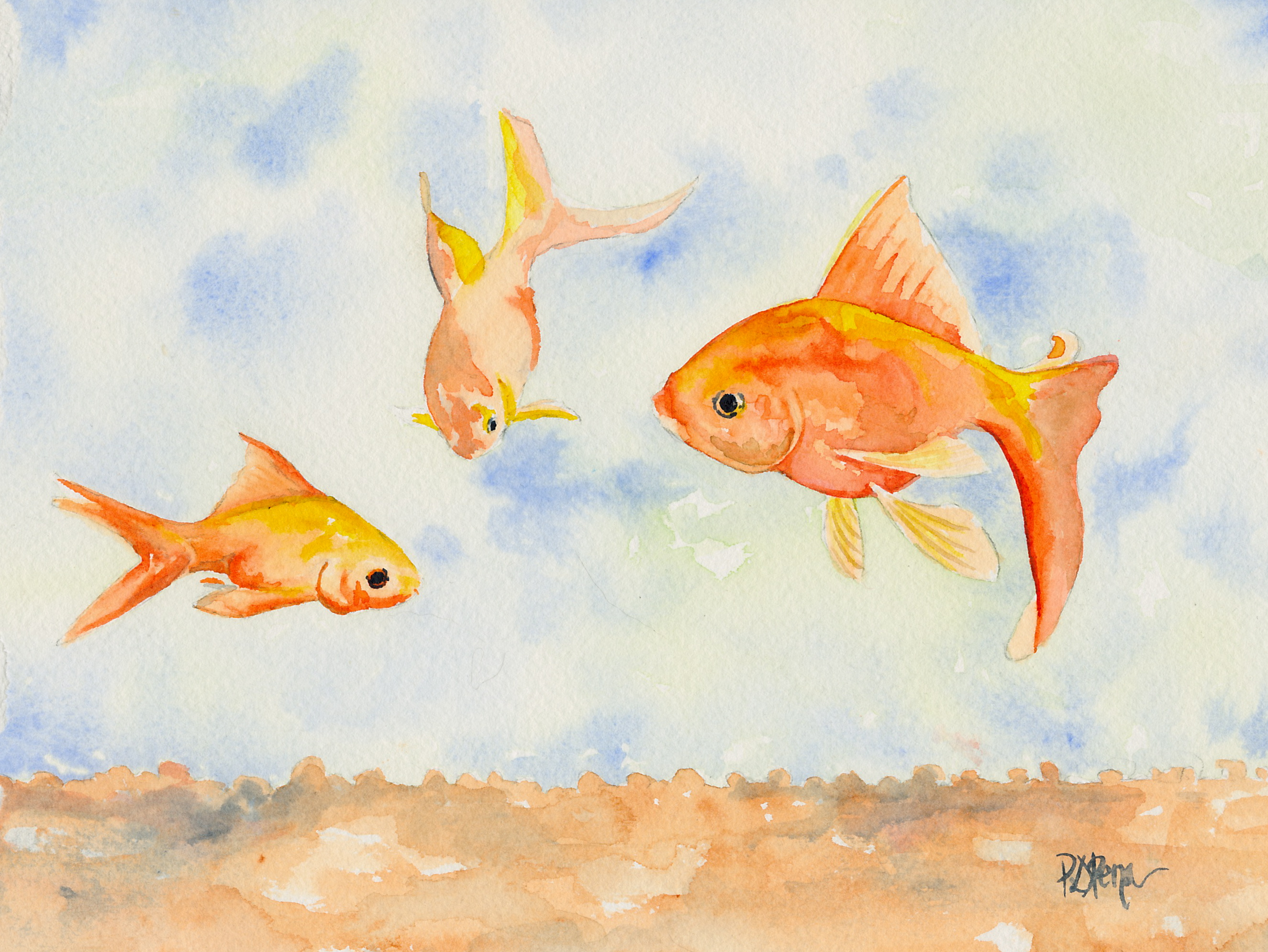 Beautiful Goldfish Art